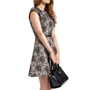 Ted Baker Lace Minidress